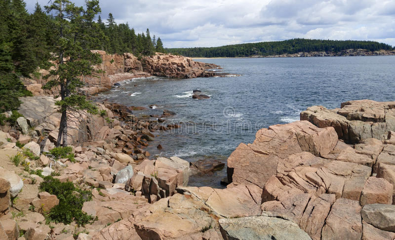 Rotsachtige kust in Maine stock foto