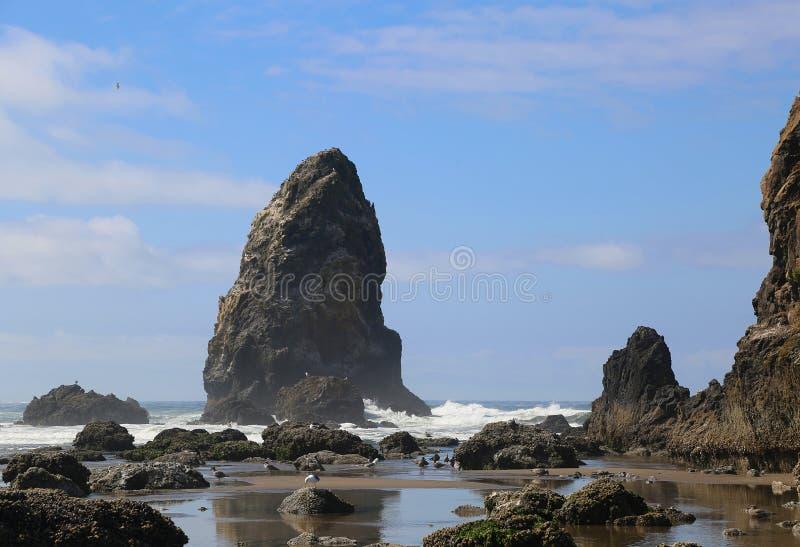 Rotsachtige kust van Oregon stock afbeeldingen