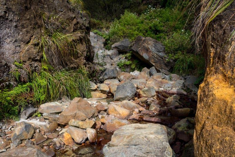 Rotsachtige stroom met duidelijk water op een berg Mooi landschap van onderstel Papandayan De Papandayanberg is één van de favori stock afbeelding
