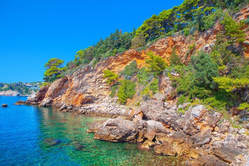 Rotsachtige tropische kust royalty-vrije stock fotografie