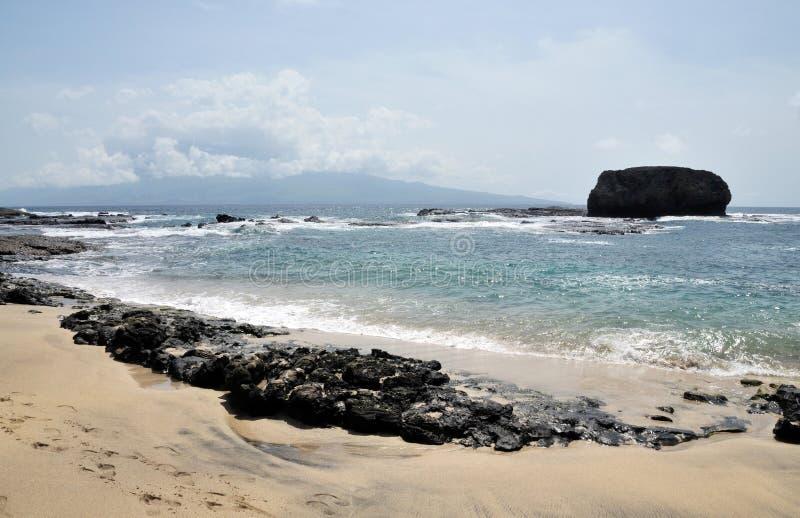 Rotsbarrière op strand stock foto's