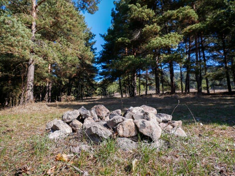 Rotsen die een open haard in het pijnboomhout vormen royalty-vrije stock fotografie