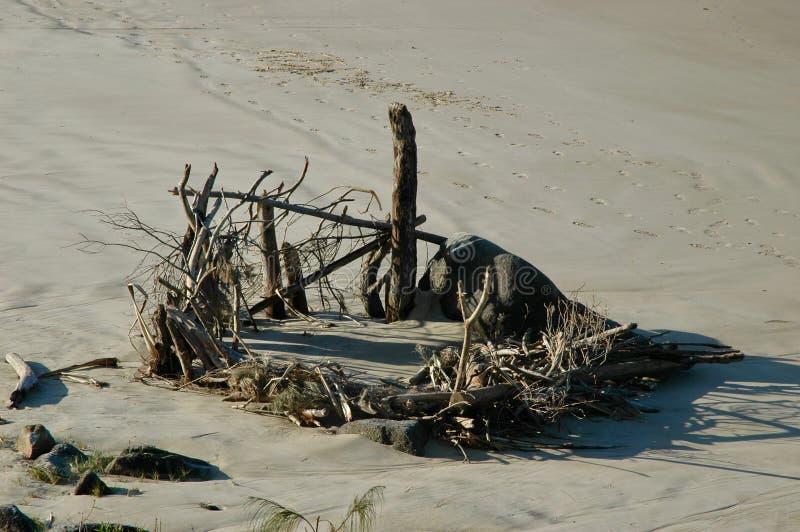 Rotsen en drijfhout in een cirkel op een strand worden gemaakt dat royalty-vrije stock foto
