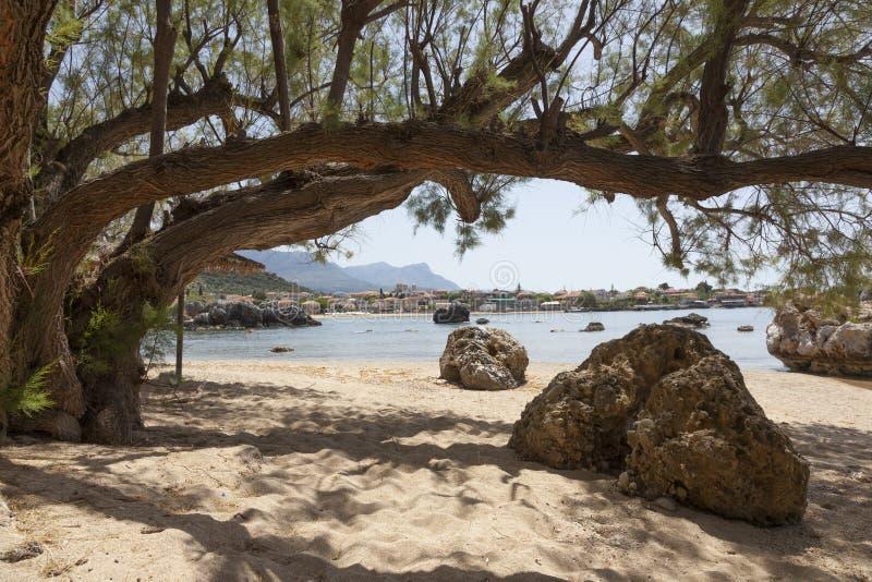 Rotsen en oude boom op stoupastrand op Griekse schiereilandmani op pe stock foto's