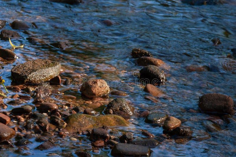 Rotsen in ondiep water stock afbeeldingen