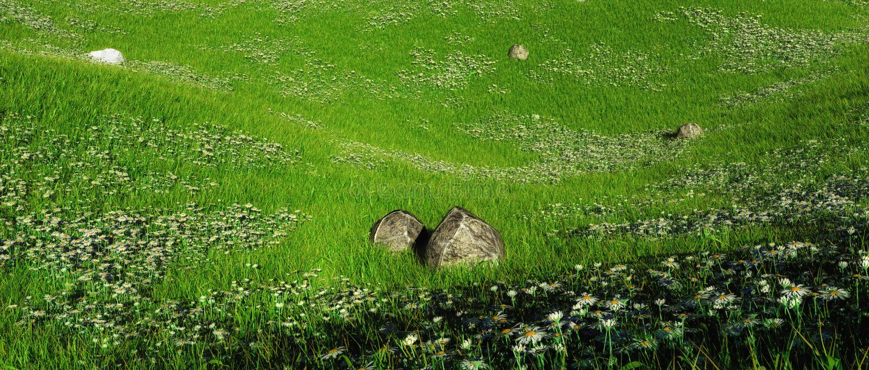 Rotsen op heuvelig gebied van madeliefjes stock illustratie