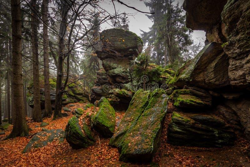 Rotshoogtepunt van mos in het kleurrijke de herfstbos dichtbij Zkamenely zamek stock foto