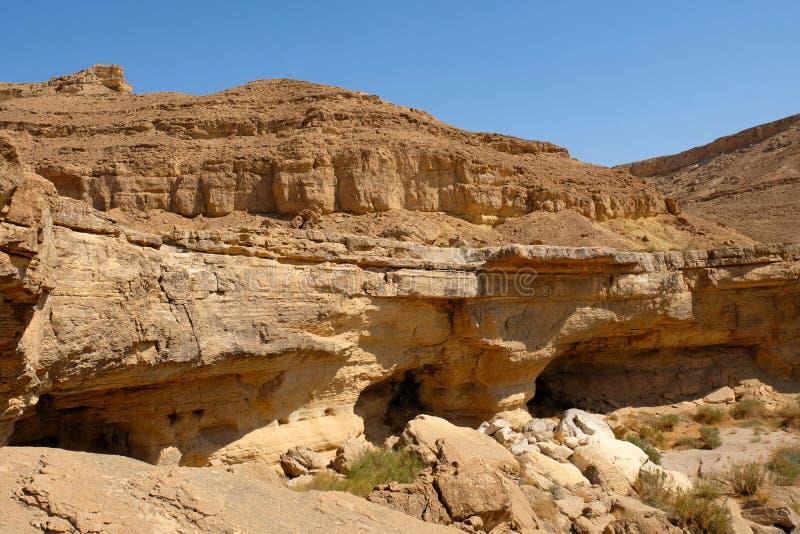 Rotslandschap in Negev-woestijn royalty-vrije stock fotografie