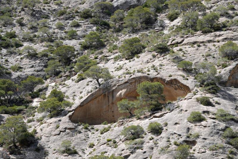 Rotslandschap van Caminito del Rey in Andalusia, Spanje royalty-vrije stock foto's