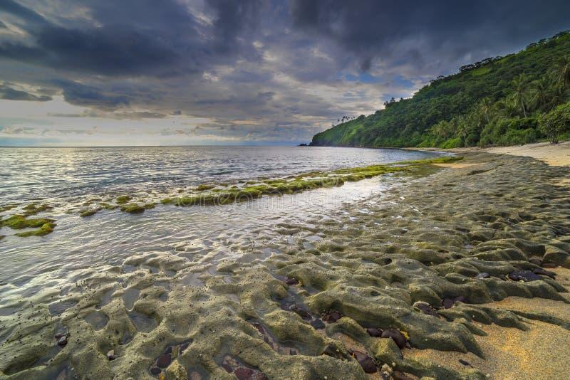 Rotsmossen bij Lombok-Strand, Indonesië royalty-vrije stock foto's