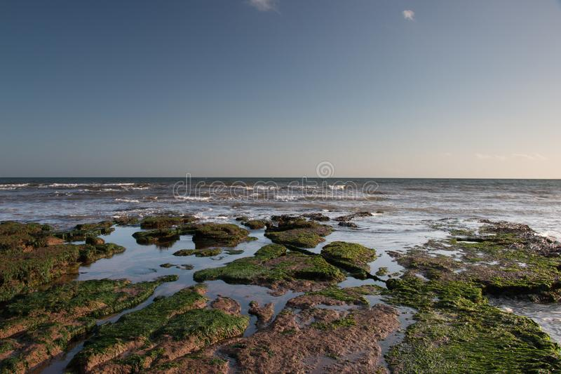 Rotspools bij Exmouth-strand stock foto's