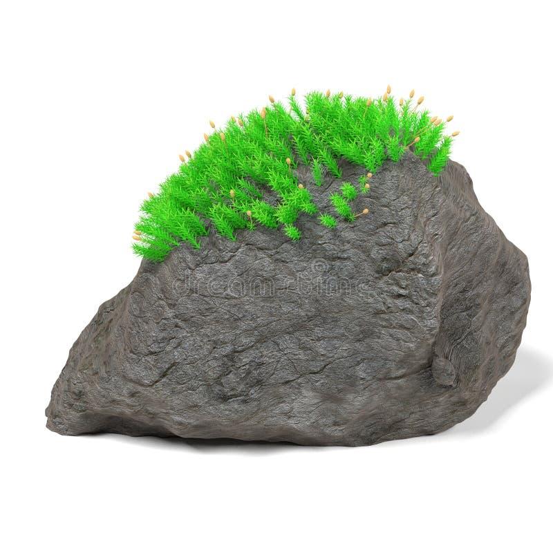 Rotssteen met mos vector illustratie