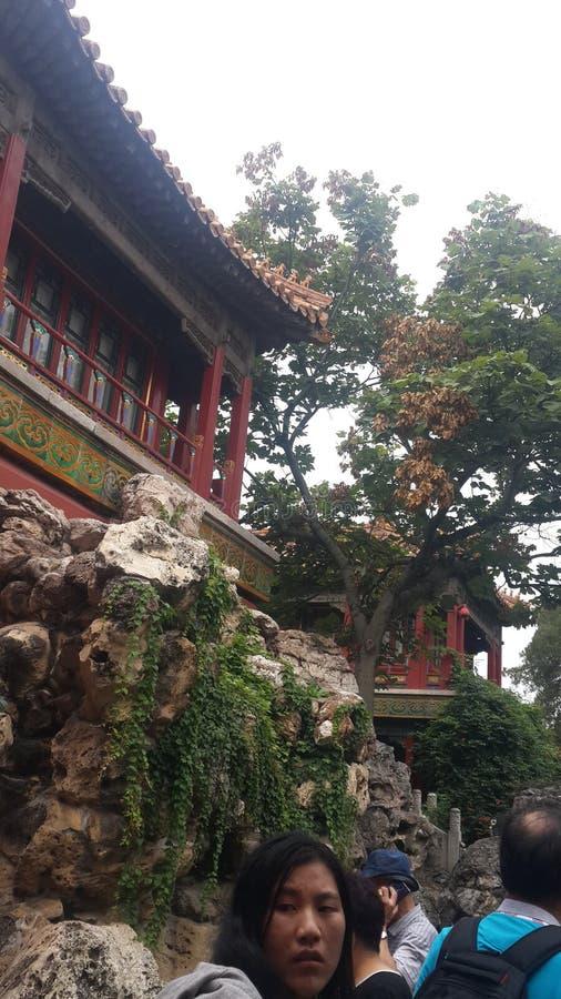 Rotstuinen van de Verboden Stad, Peking, China royalty-vrije stock foto