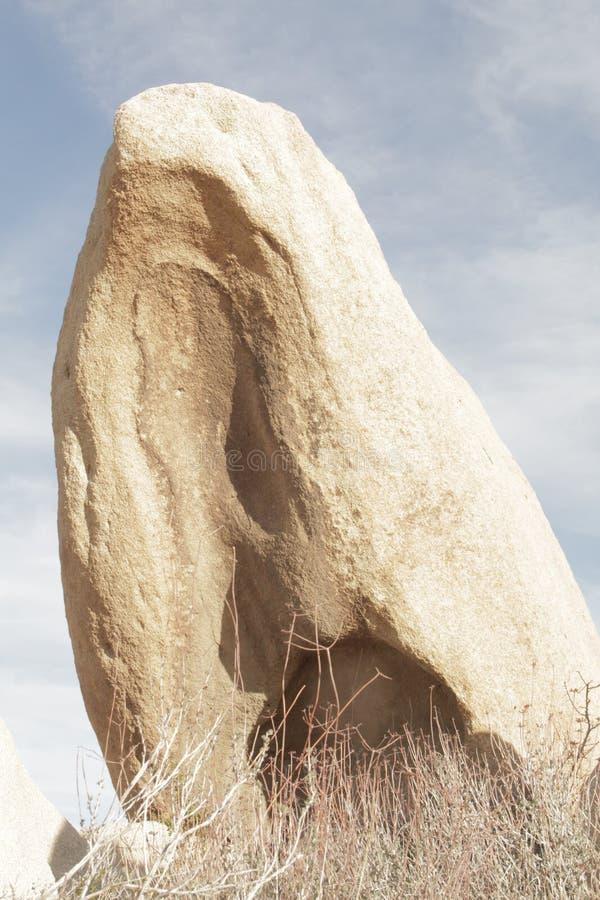 Rotsvorming Joshua Tree National Park stock afbeelding