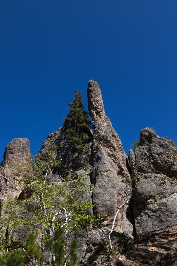 Rotsvormingen in Custer State Park royalty-vrije stock afbeeldingen