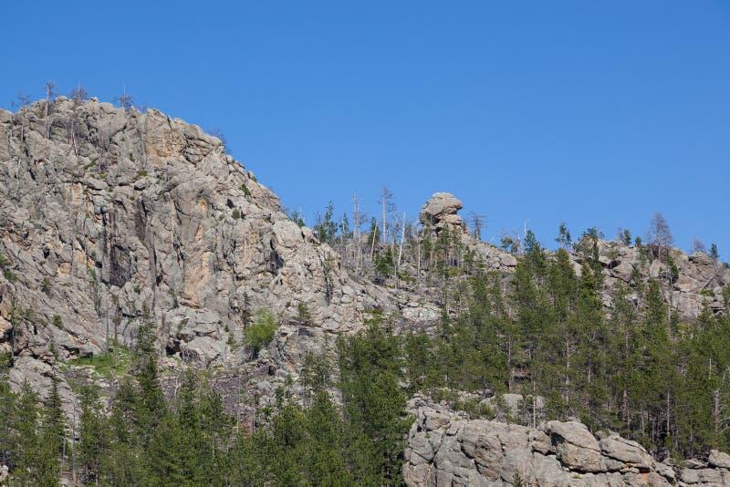 Rotsvormingen in Custer State Park stock afbeelding