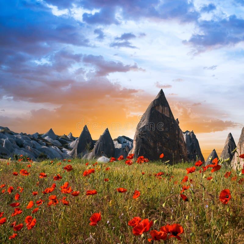 Rotsvormingen en bloemen van Cappadocia royalty-vrije stock afbeelding