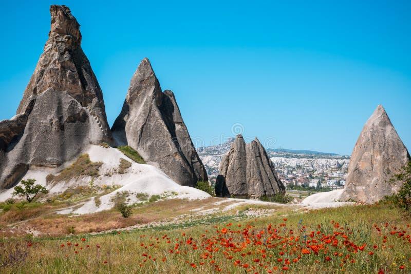 Rotsvormingen en bloemen van Cappadocia stock foto