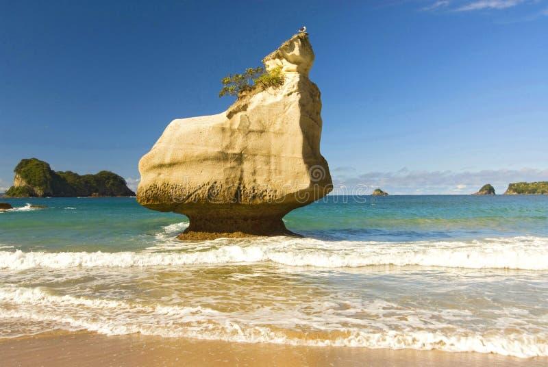 Rotsvormingen en fijn zandig strand bij Kathedraalinham op het Coromandel-Schiereiland in Nieuw Zeeland, het Noordeneiland royalty-vrije stock foto's