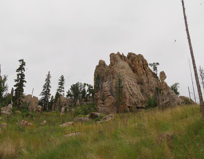 Rotsvormingen, Naaldenweg, Zuid-Dakota royalty-vrije stock foto