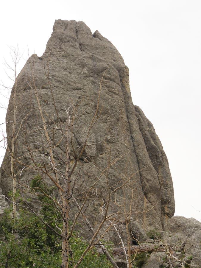 Rotsvormingen, Naaldenweg, Zuid-Dakota stock fotografie