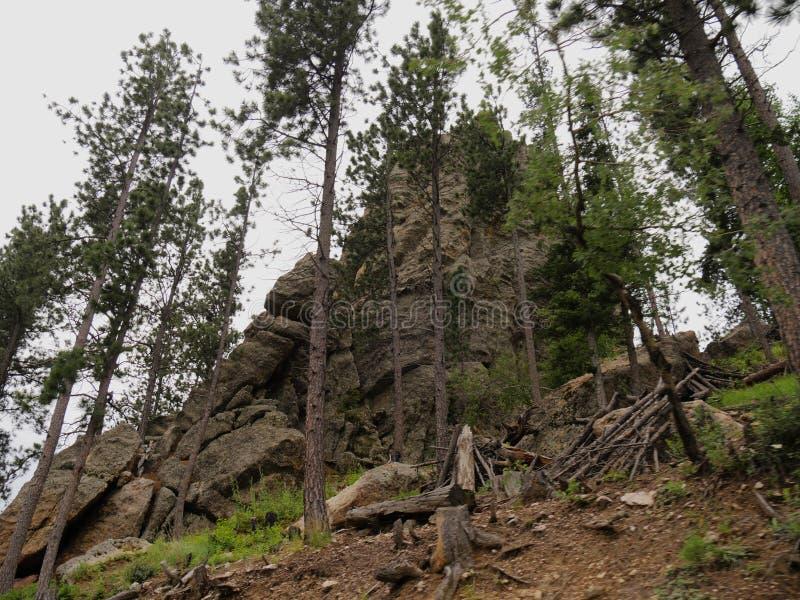 Rotsvormingen, Naaldenweg, Zuid-Dakota stock foto
