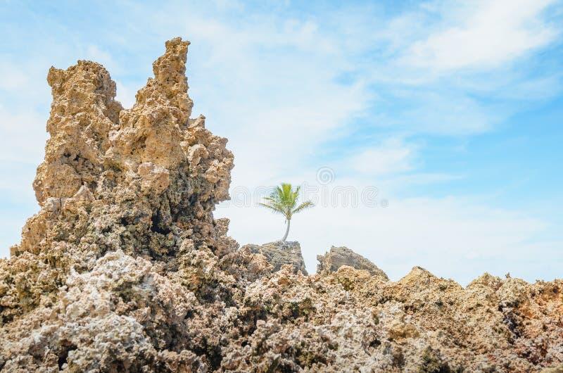 Rotsvormingen van Tambaba-strand stock foto