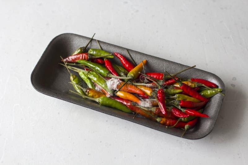 Rotte bedorven rotte vruchten van rode en groene Spaanse peperpeper Rot voedsel, beschadigde peper Vorm op groenten stock fotografie