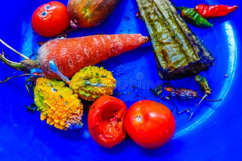 Rotte groenten wegens gedurende meerdere dagen ongekookt het blijven royalty-vrije stock afbeeldingen