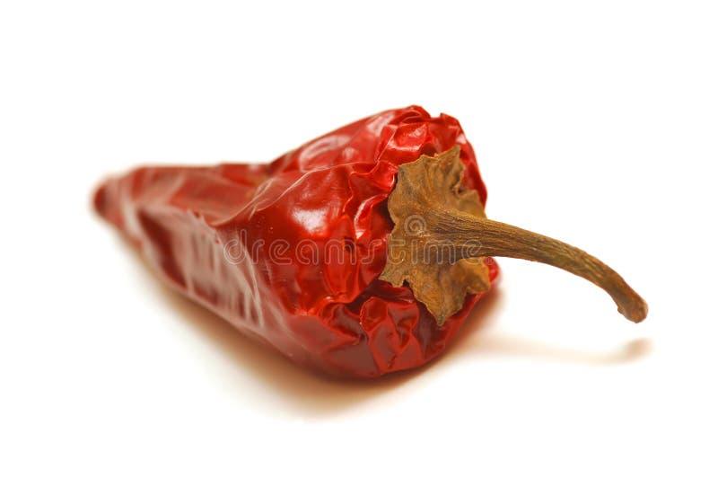 Rotte peper royalty-vrije stock afbeelding