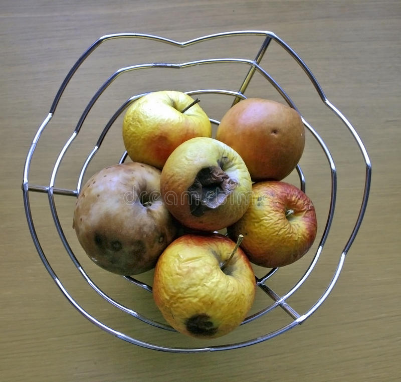 Rotten Apples. In a Bowl royalty free stock image