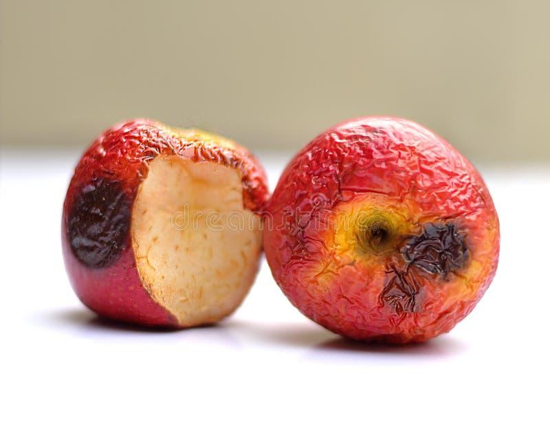 Rotten apples on white backgroud stock image