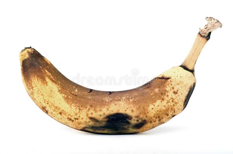 Download Rotten banana stock photo. Image of eating, moldy, waste - 24002358