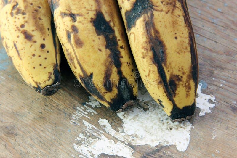 Rotten banana royalty free stock photo