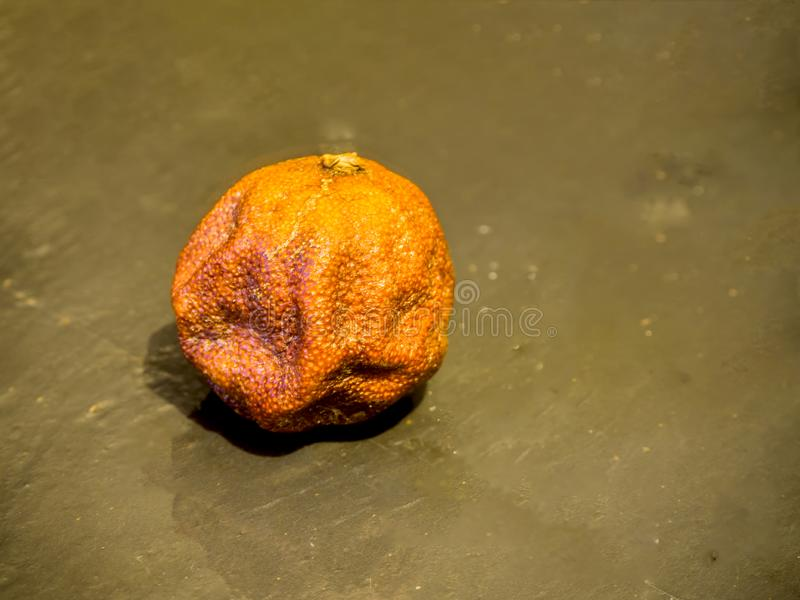 Rotten mandarin ob black stone royalty free stock photos
