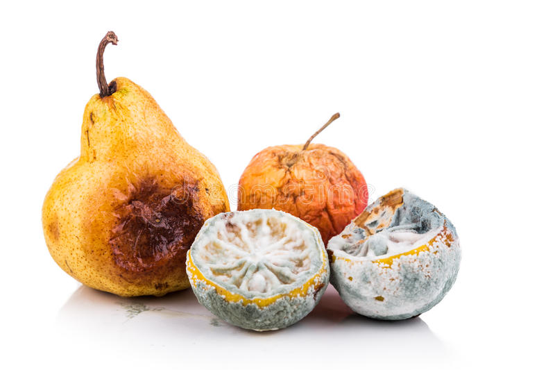 Rotten, moldy and decomposing lemon, apple, pear on white background royalty free stock photo