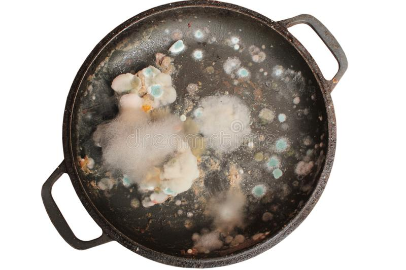 Rotten and moldy food closeup stock photography