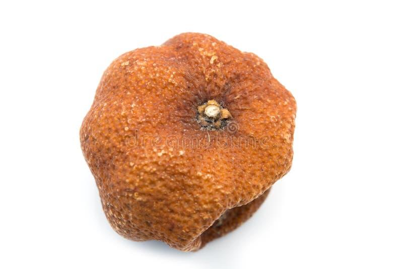 Download Rotten orange isolated stock photo. Image of contaminate - 34418358