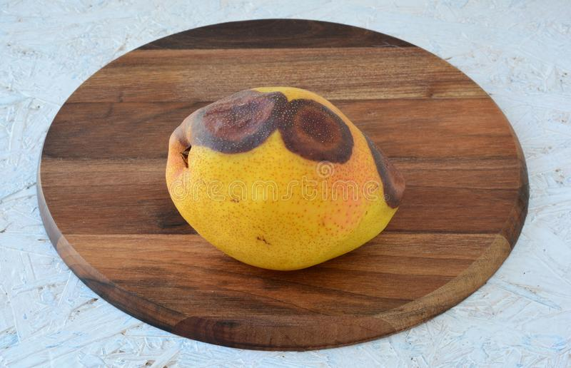 Rotten pear on a chopping board royalty free stock photo