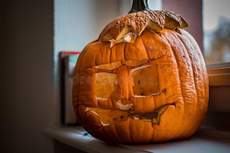 Rotten pumpkin. Old, rotten pumpkin at a window royalty free stock photos