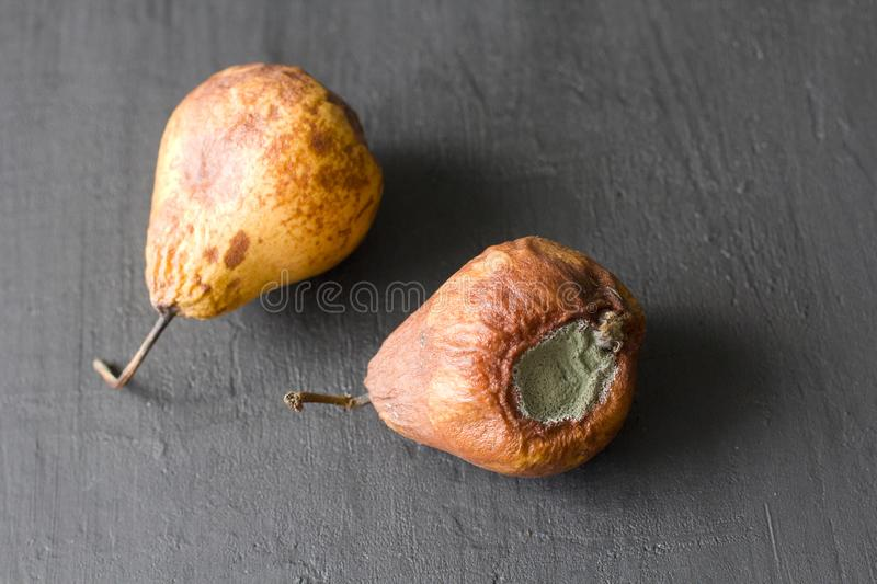 Rotten spoiled rotten fruits, pears. Rotten pears on a black dark background. Damaged products, mold. Copy space for your text. stock photography