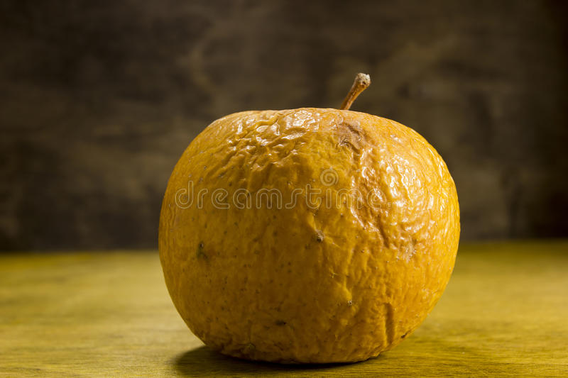 Rotten wrinkled apple royalty free stock photos