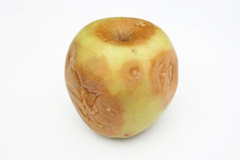 Rotten yellow apple royalty free stock photos