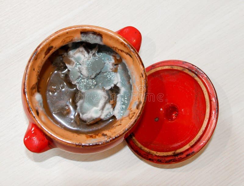 Rottend voedsel Vorm het groeien op gestoofde groenten Hoogste mening royalty-vrije stock foto