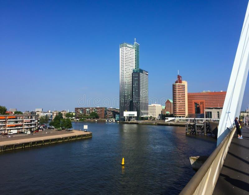 Rotterdam/die Niederlande - 5. Juni 2018: Schöne Ansicht von ERASMUS-Brücke auf Stadtbild von Rotterdam stockbilder