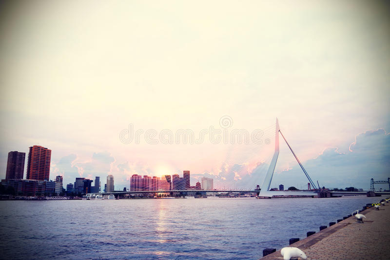 Rotterdam and Erasmusbrug royalty free stock photography