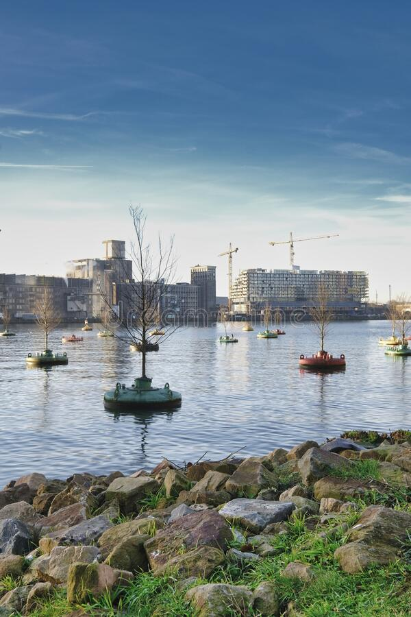 Rotterdam - 14 February 2019: Rotterdam, The Netherlands A floating forest in the heart of the city, the Rijnhaven in. The morning, several old industrial stock photo