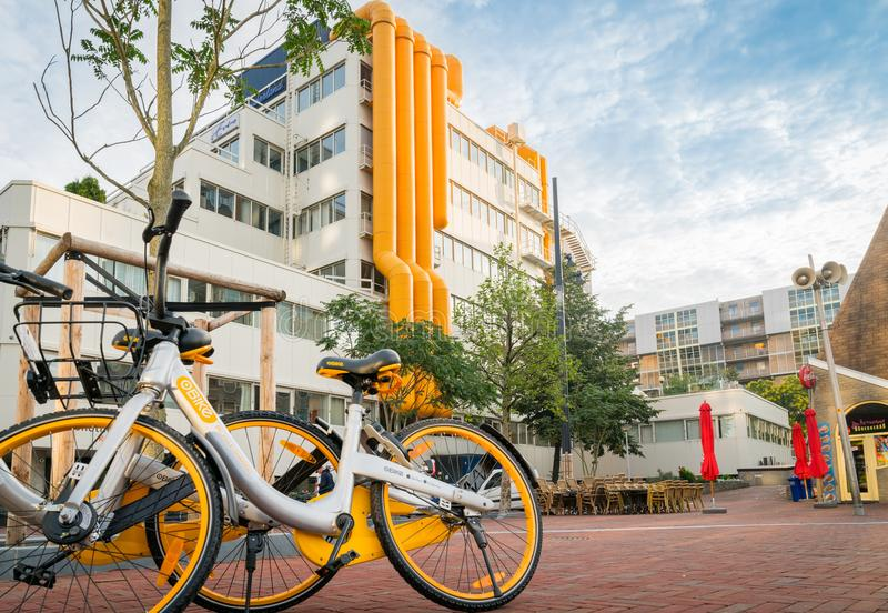 Two yellow and white share bikes leaning against tree in front o stock photos