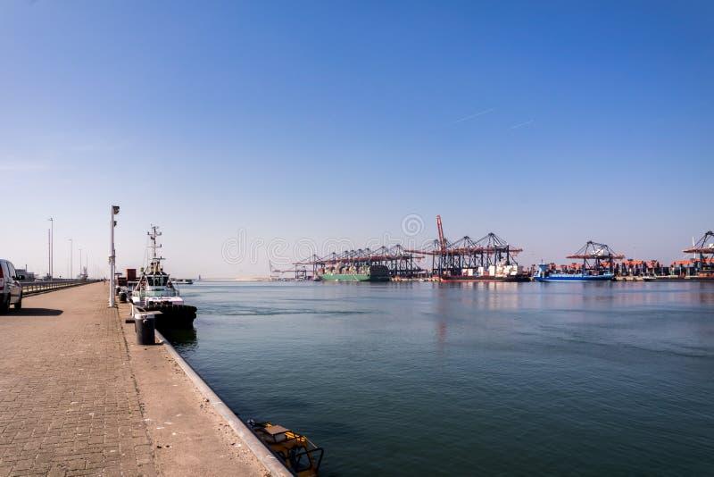 Rotterdam, Países Bajos - 20 de abril de 2018: El puerto grande cranes portacontenedores del cargamento en el puerto de Rotterdam fotografía de archivo