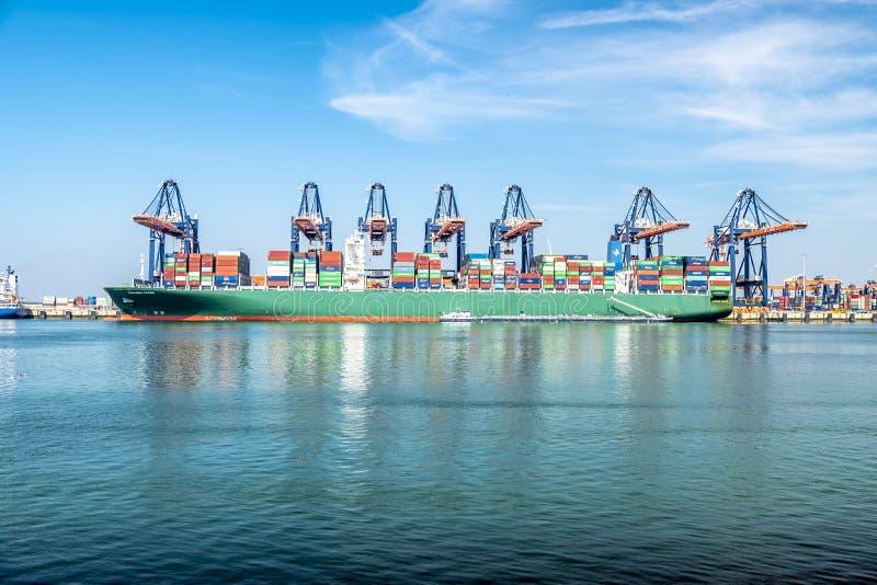 Rotterdam, Paesi Bassi - 20 aprile 2018: Il grande porto cranes le navi porta-container di caricamento nel porto di Rotterdam immagini stock